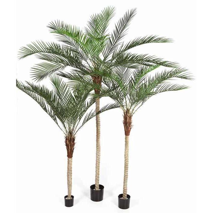 Phoenix palm 180cm arbre tropical palmier artificiel for Vente palmier artificiel