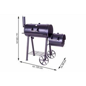 Nouveau remplacement gaz incendie square charbons 30