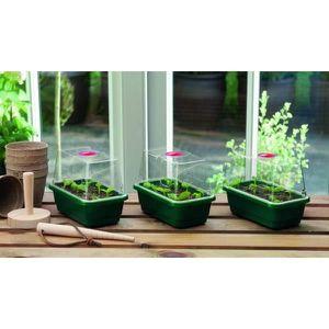 POT DE GERMINATION Set de 3 mini germoirs à dôme jardinage plantation