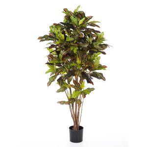 arbre olivier achat vente arbre olivier pas cher soldes d s le 10 janvier cdiscount. Black Bedroom Furniture Sets. Home Design Ideas