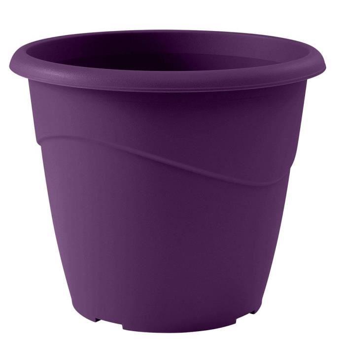 Pot De Fleur Violet