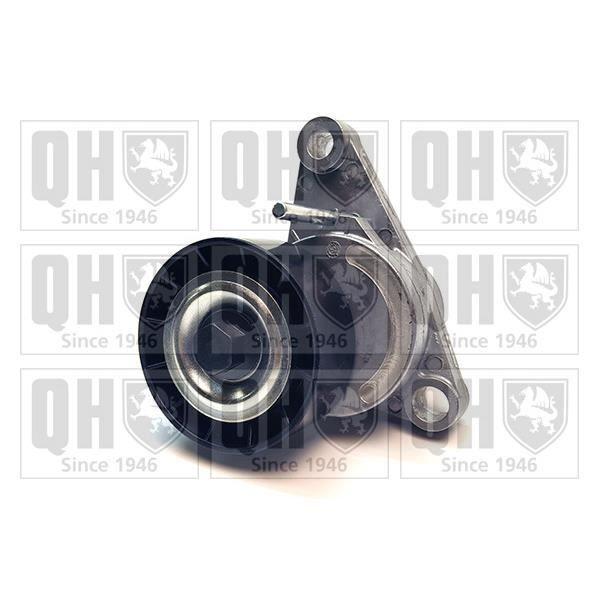 QUINTON HAZELL Galets entraînement QTA1383