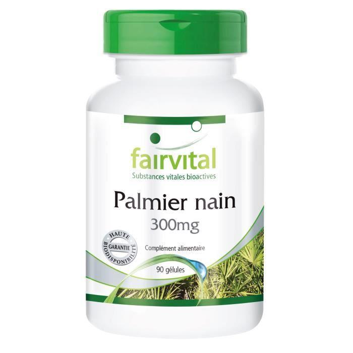 palmier nain poitrine