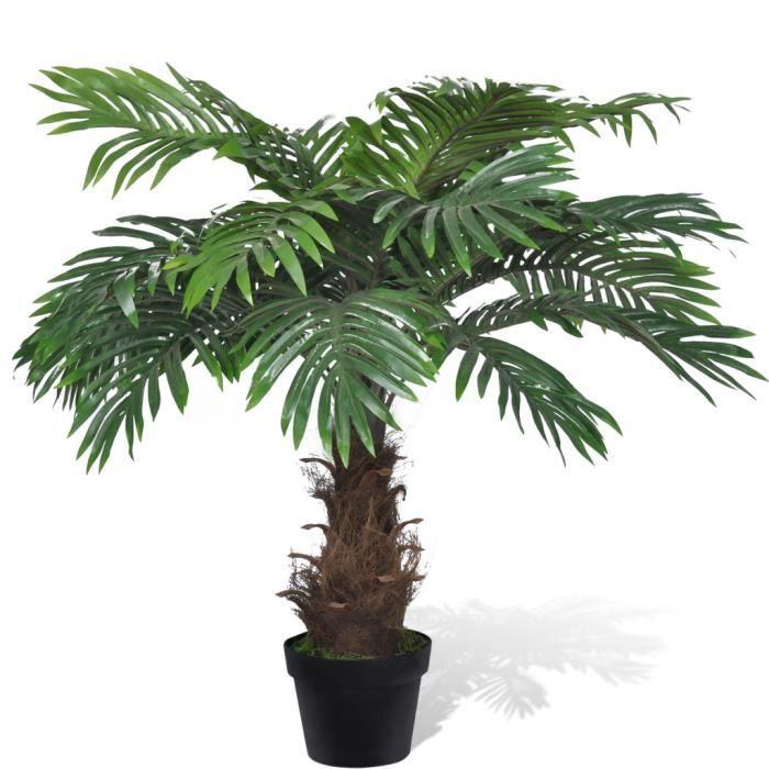 palmier 80 cm