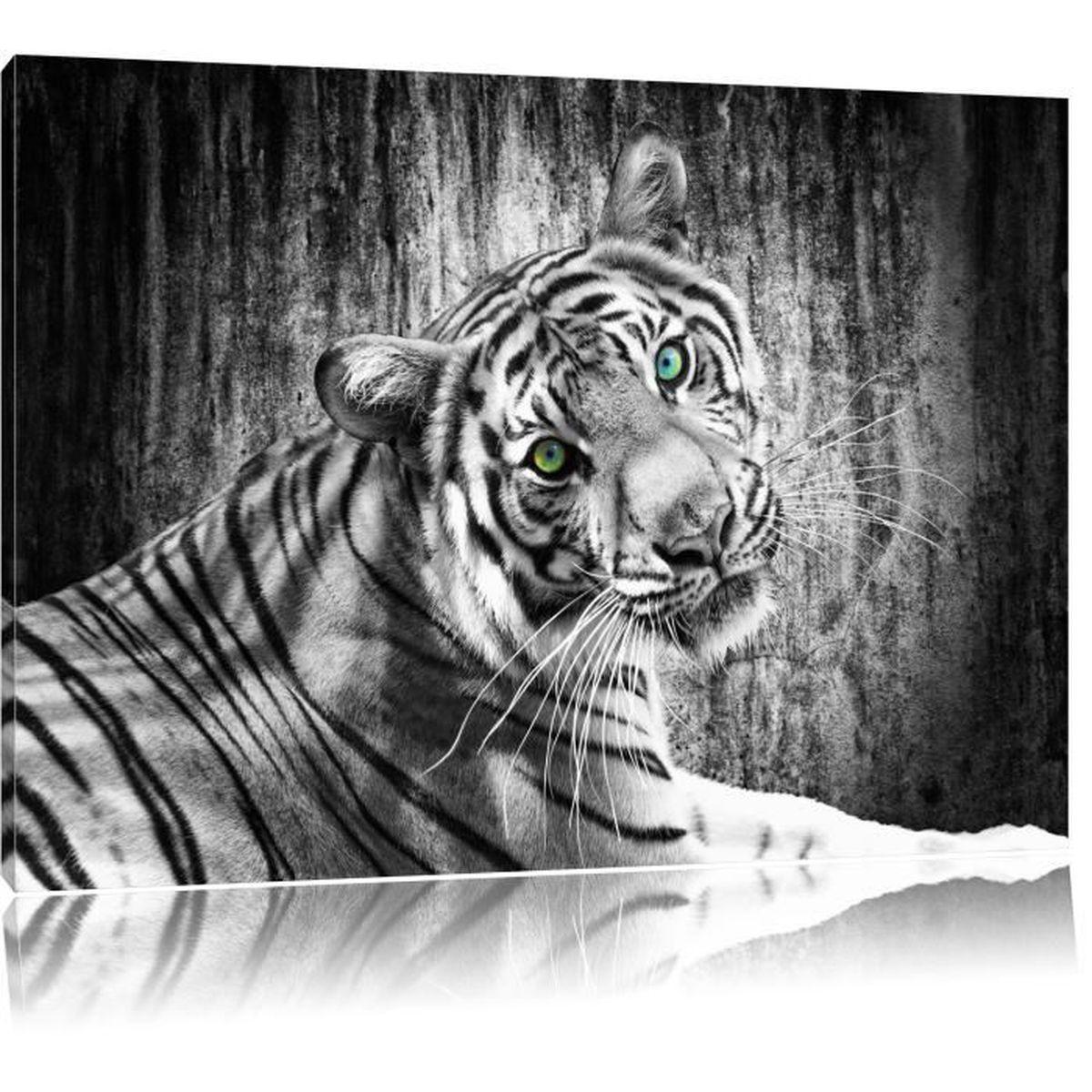 cadre photo noir et blanc animaux id es d coration. Black Bedroom Furniture Sets. Home Design Ideas