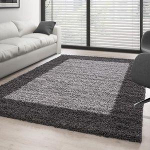 tapis tapis de salon shaggy pile longue designe 2 couleu - Tapis De Salon