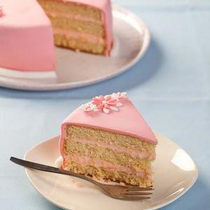 GÂTEAU PÂTISSIER Mix Préparation Cup Cakes Funcakes 500g