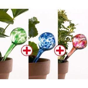 arrosage automatique plantes 3 globes d 39 eau achat vente pulv risateur jardin arrosage. Black Bedroom Furniture Sets. Home Design Ideas