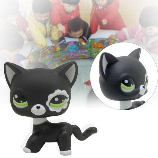 chatte noire vous tube