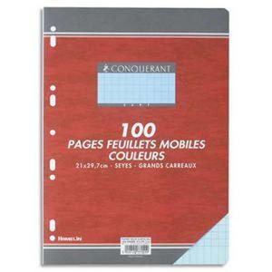 FEUILLET MOBILE Lot de 10 Feuillets mobiles, Format 21 x 29,7 cm,