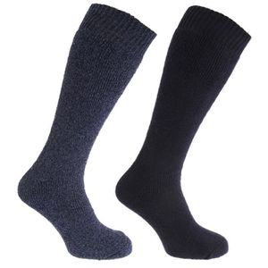 1a9d360e360 CHAUSSETTES Chaussettes hautes thermiques (2 paires) - Homme