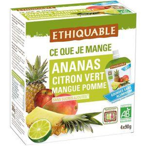 COMPOTE ETHIQUABLE Gourde Ananas Citron Vert Mangue Pomme