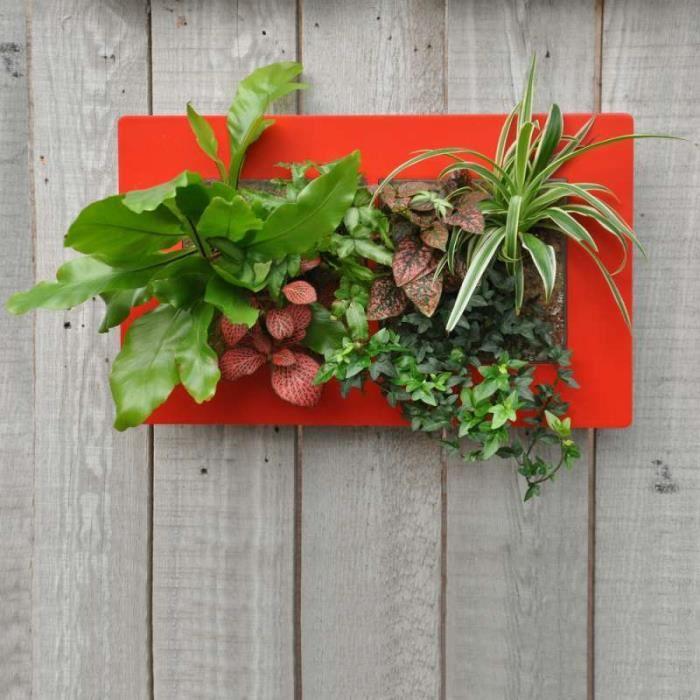 Cadre Végétal Médium Paysage Rouge 30 Cm X 48 Cm X épaisseur 8