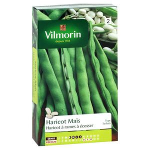 VILMORIN Haricot Soissons ma?s type Tarbais Sachet de graines