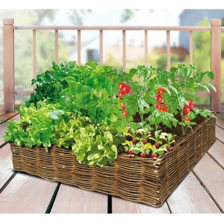 Carr potager en osier 60 x 60 achat vente jardin for Carre potager pour terrasse