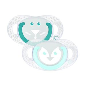 SUCETTE BEBE CONFORT Sucette natural physio silicone - Tig