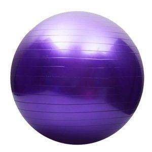 TAPIS DE SOL FITNESS 65cm exercice fitness lisse épaississement yoga ba ... 12aab4fa6ae