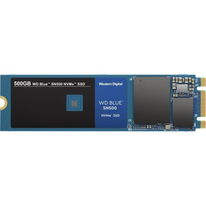 WD Blue™ Disque SSD interne SN500 NVMe™ SSD 500 Go