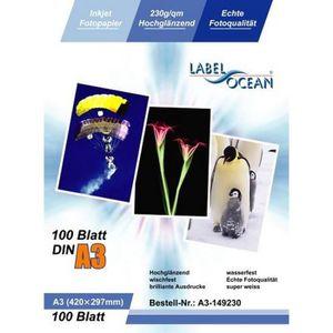 PAPIER PHOTO LabelOcean Premium Papier Photo 100 Feuilles A3…