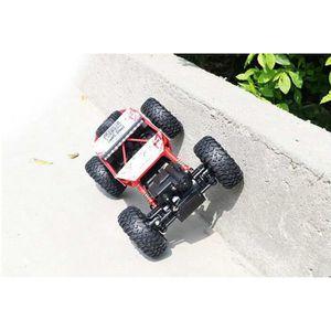 VOITURE - CAMION PIPIHUA®1 / 18ème voitures jouets 2.4Ghz rc électr