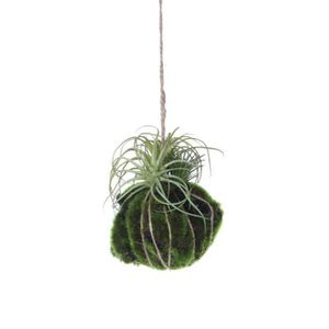 plantes artificielle a suspendre achat vente plantes artificielle a suspendre pas cher. Black Bedroom Furniture Sets. Home Design Ideas