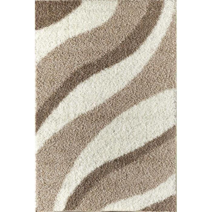 Torino tapis de salon shaggy 80x150 cm beige achat vente tapis cdiscount - Tapis salon beige ...