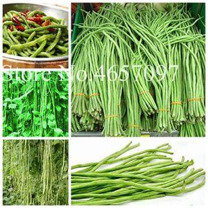 Monsieur Fothergills-légume-Haricot célébration 40 graines