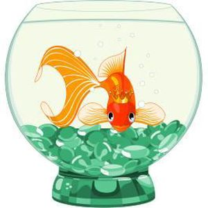 Stickers poisson rouge achat vente stickers poisson for Achat poisson rouge 92