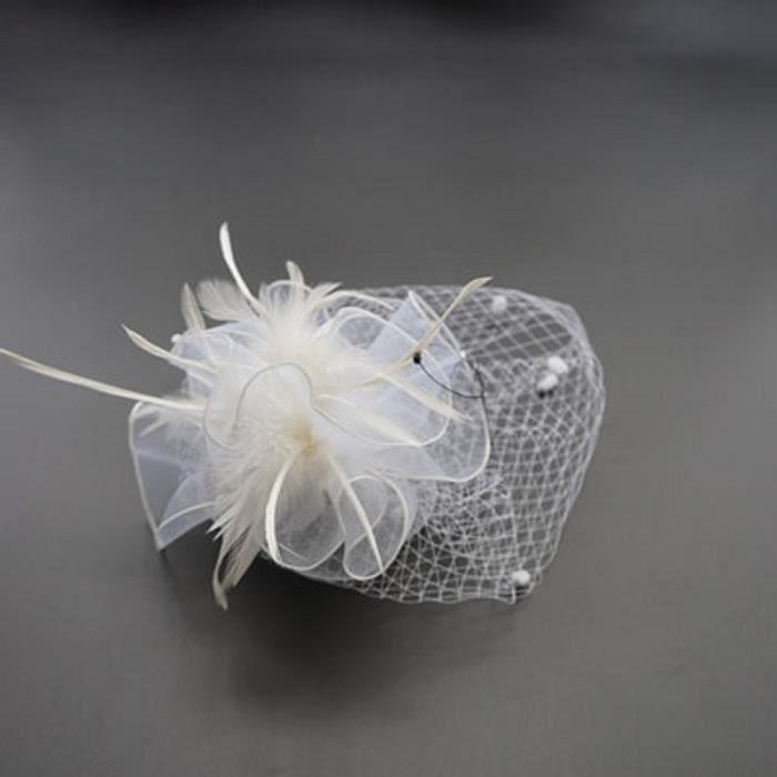 rechercher le dernier rabais de premier ordre nouveaux produits chauds Pince à cheveux Cocktail Chapeau Bibi Spectacle Chapeau serre-tête  Couvre-chef Vintage avec Voilette pour Mariage Banquet Bal Femme