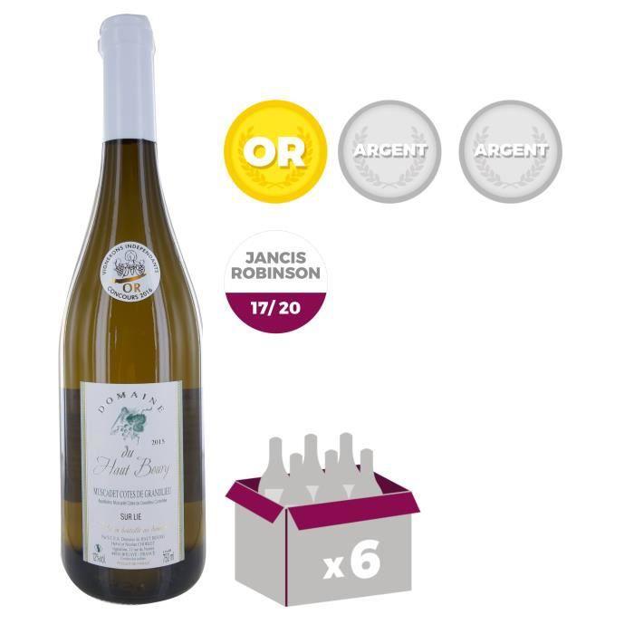 VIN BLANC Domaine du Haut Bourg 2015 Muscadet Côtes de Grand