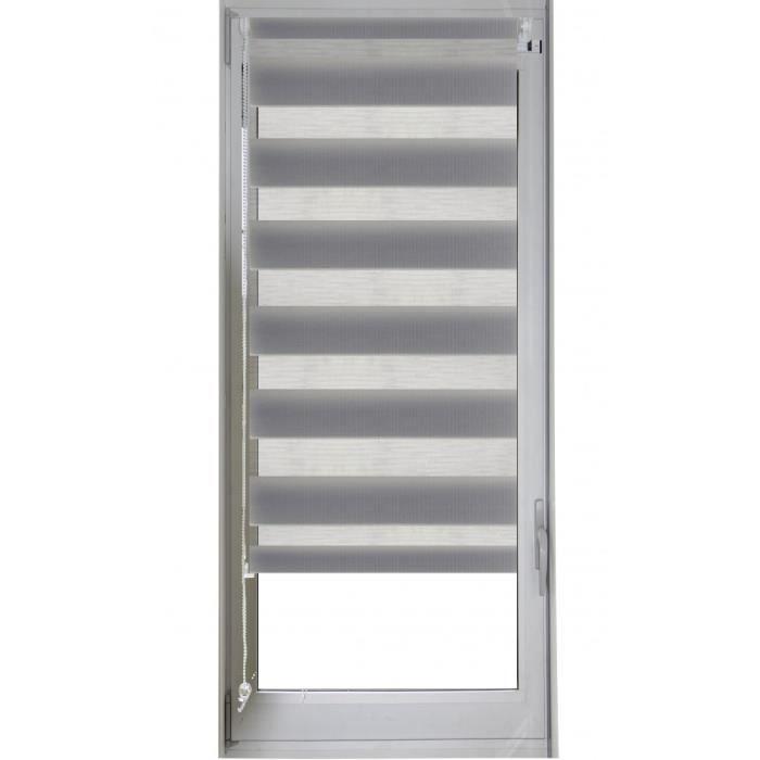 store enrouleur jour/nuit gris 52 x 170 cm - achat / vente store