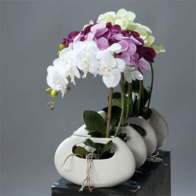 Orchidee Artificielle Creme 1 Hampe Pot Ceramiq Achat Vente