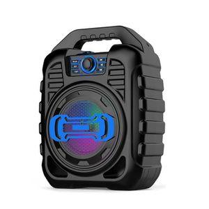 ENCEINTES ORDINATEUR Haut-parleur portable Bluetooth Radio FM Télécomma
