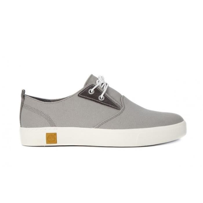 Chaussures Timberland Amherst Pto
