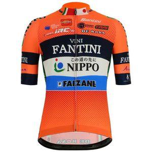 6095e0fb0307a T-SHIRT MAILLOT DE SPORT Vêtements Homme Maillots Santini Nippo Vini Fantin