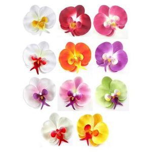 Decoration mariage orchidee achat vente decoration mariage orchidee pas cher soldes d s - Deco mariage orchidee ...
