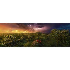 PUZZLE Puzzle panoramique 1000 pièces : Horizon orageux a