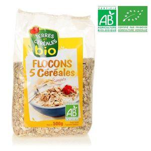 GALETTES RIZ - MAÏS BIOTHENTIC Flocons 5 céréales 500 g