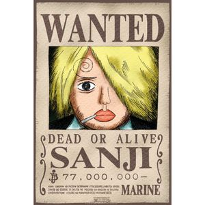 Poster one piece wanted achat vente poster one piece wanted pas cher cdiscount - Affiche one piece wanted ...