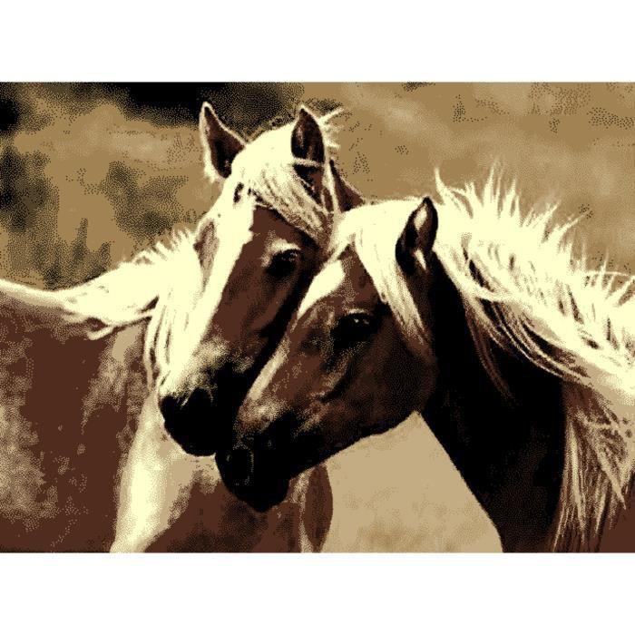 tapis animaux chevaux 160x230 832 chevaux achat