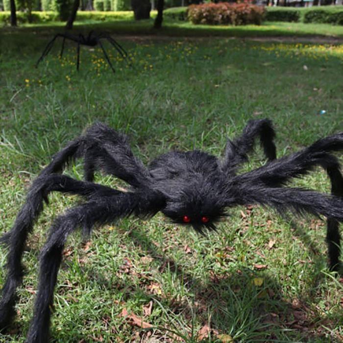 Déluge de fumées avec Ariane l'araignée géante