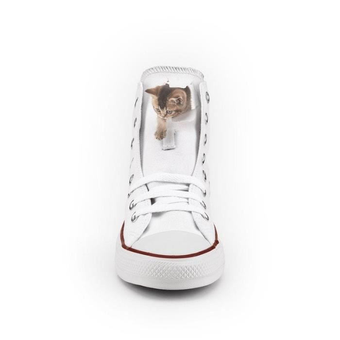 Converse All Star Personnalisé et Imprimés - chaussures à la main - produit Italien - Funny Cat - Taille 32
