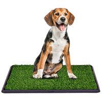 TOILETTE D'EXTÉRIEUR Litière dans gazon synthétique pour chiens Toilett