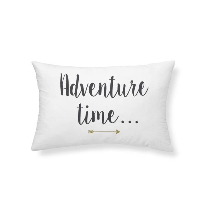 COUSSIN TODAY Coussin - Gold is Black - Adventure Time - 3