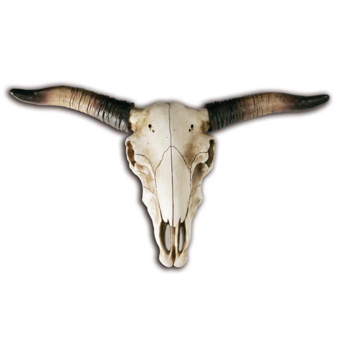 OBJET DÉCORATION MURALE crane de bison géant 48 cm