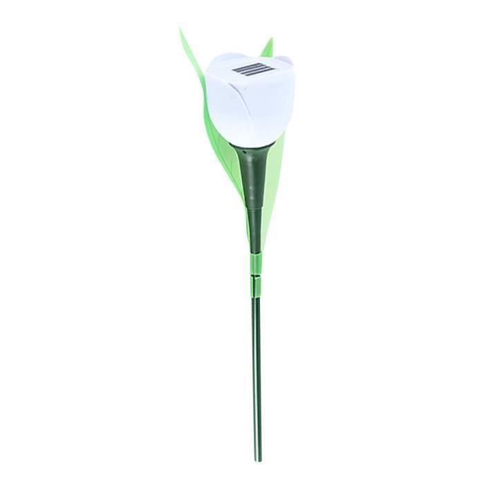 Veilleuse Lampe Wxq90222751wh lavieni Led Fleur Paysage Jardin Extérieur Solaire De Tulipe Chaude Pelouse CWedQxorB