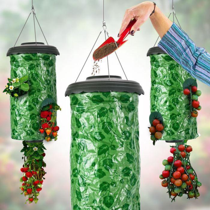 potagers suspendus fraises achat vente carr potager table potagers suspendus fraises. Black Bedroom Furniture Sets. Home Design Ideas