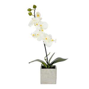 orchidee artificielle - achat / vente orchidee artificielle pas
