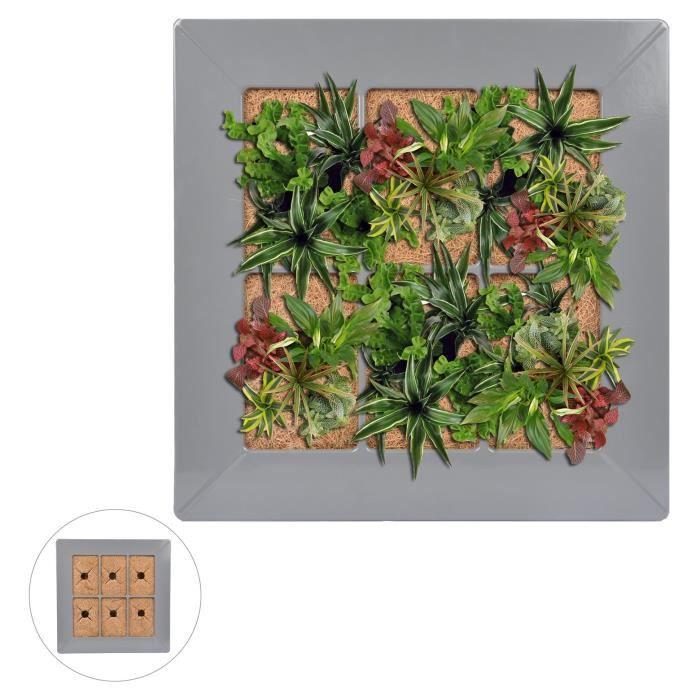 mur vegetal interieur achat vente pas cher. Black Bedroom Furniture Sets. Home Design Ideas