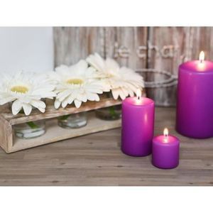 BOUGIE DÉCORATIVE LE CHAT Lot de 4 bougies violets d38xh40mm parfum